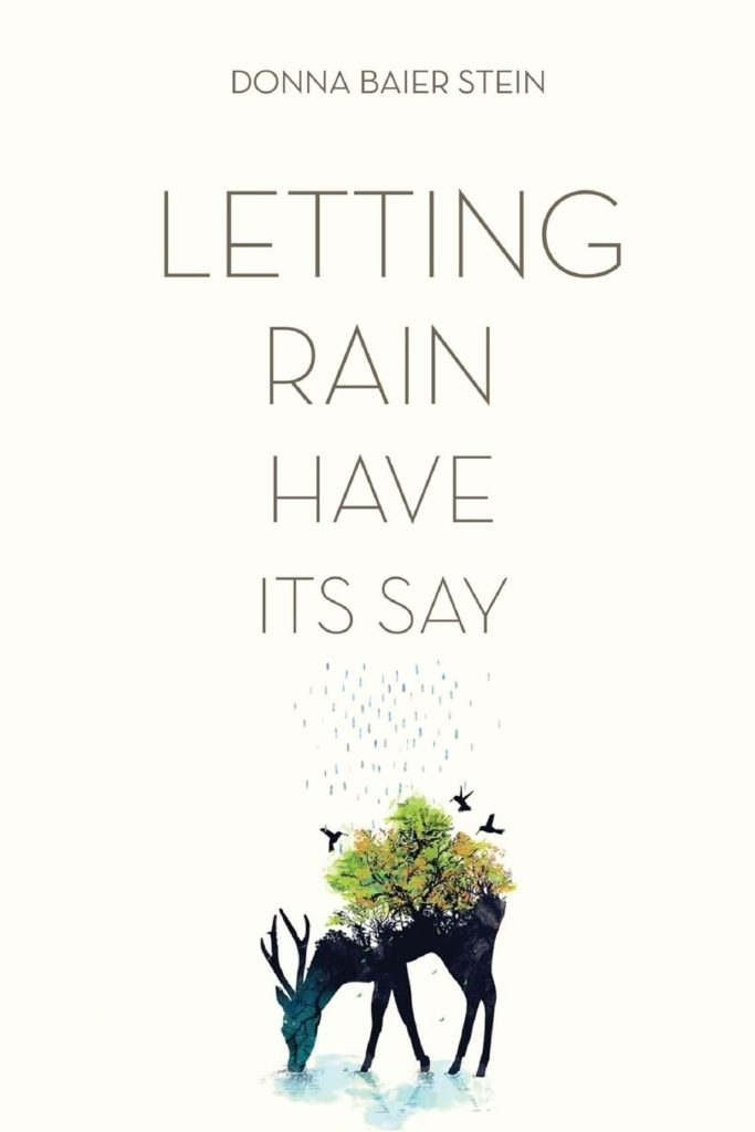 Letting Rain Have Its Say - Donna Baier Stein